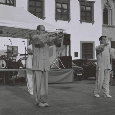 Deň Konfuciovho inštitútu (4)